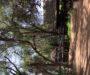 Samburu Tented Camp – A Samburu sátortábor