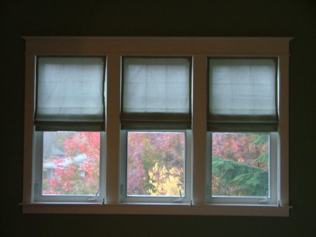 Leaves and Windows November 2006 007